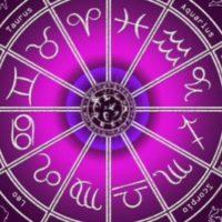 Зодиакальный круг малиновый