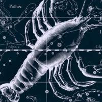 Рак на астрологическом небе