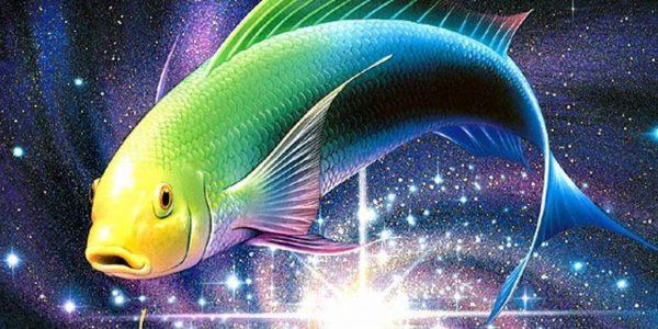 Необычный окрас Рыбы