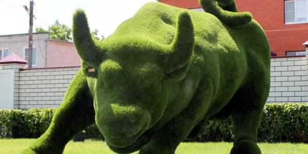 Зеленый бык